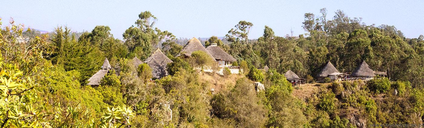 etiopia, dorze lodge, hotel, spanie, nocleg