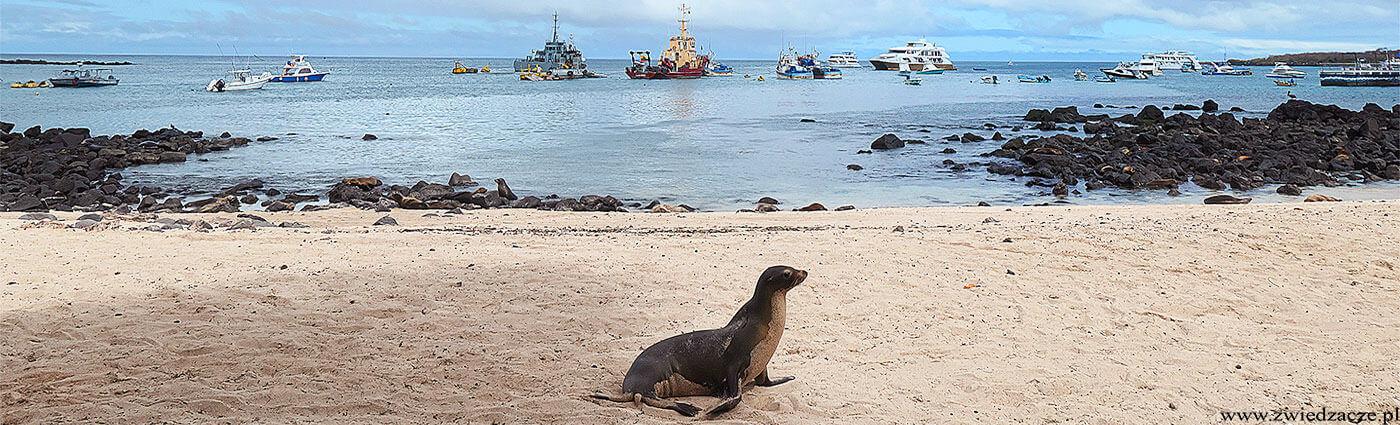 san cristobal, port, galapagos